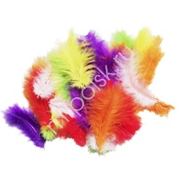 Y Перья разноцветные 30шт